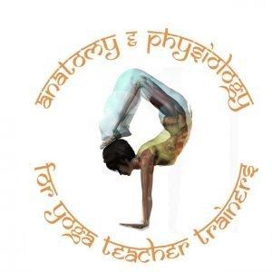 Yoga Anatomy Manual