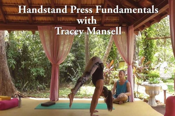 hanstand press fundamentals episode 1